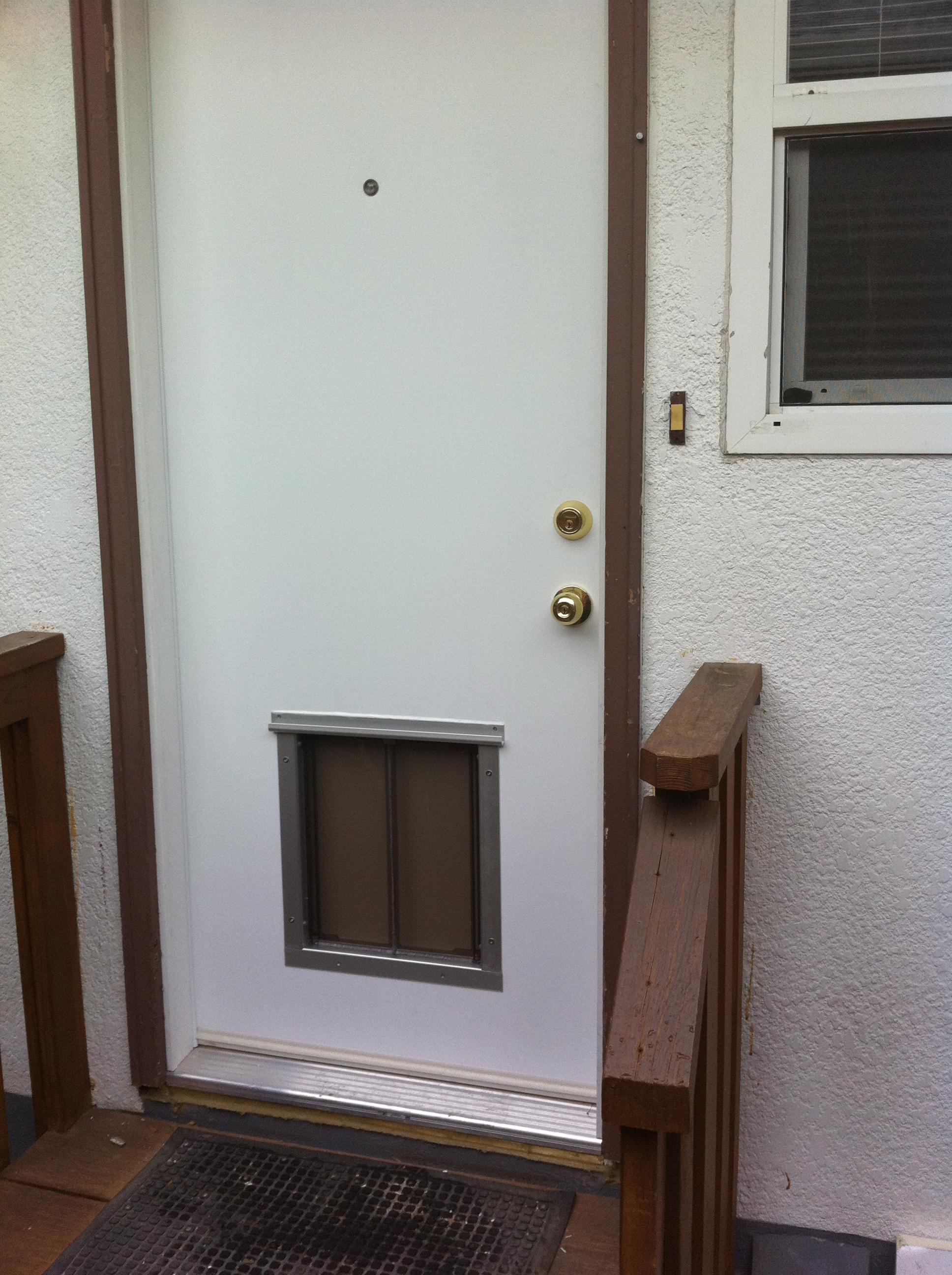 Pet Door Installation Locations Dog Doors Cat Doors