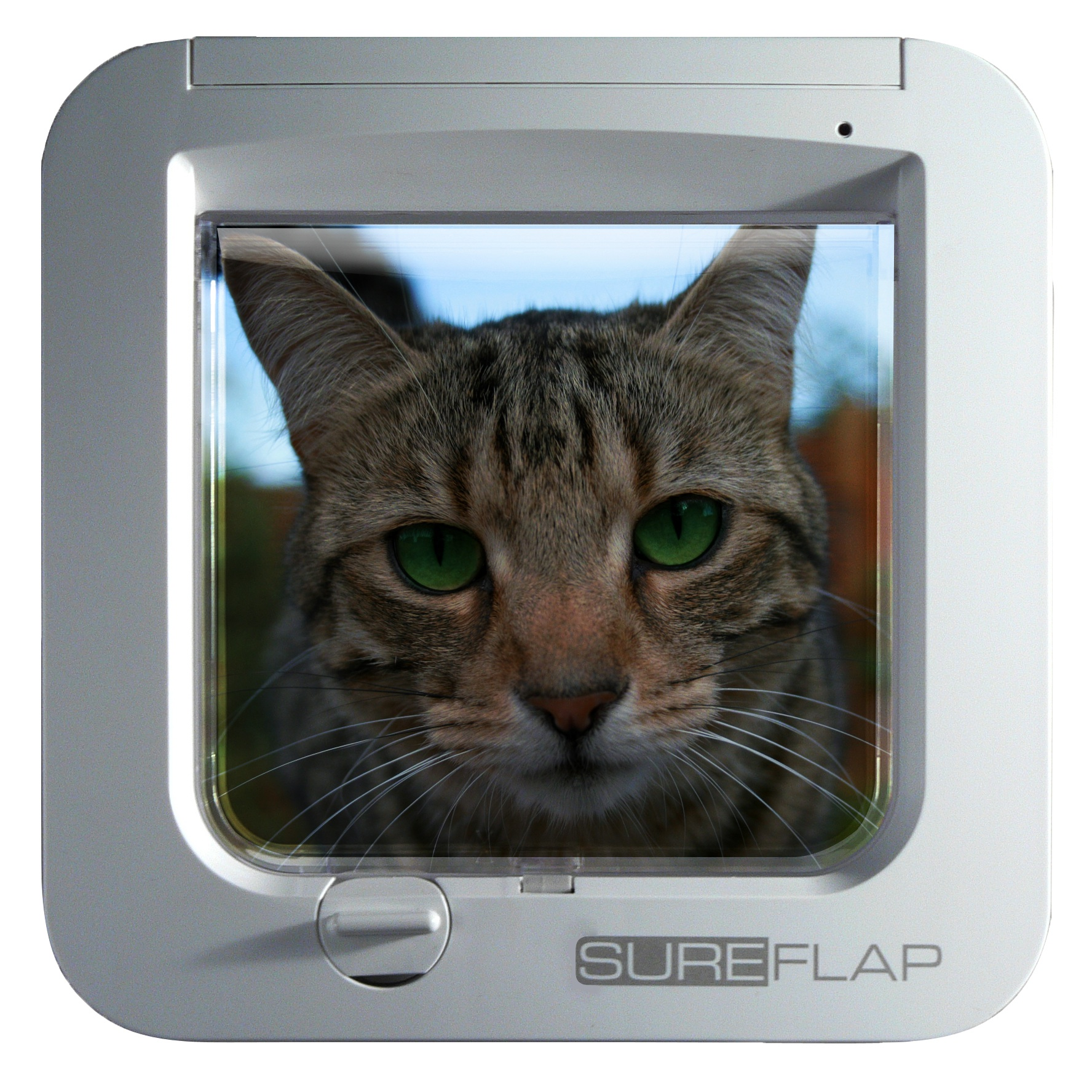 Sureflap Microchip Cat Flap Dog Doors Cat Doors Pet