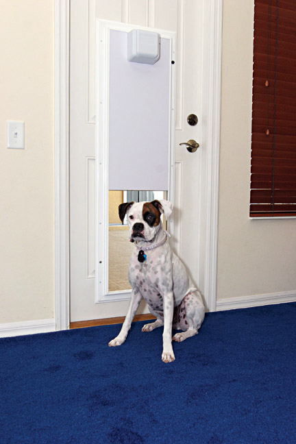 Plexidor electronic dog doors wall mounted dog doors cat doors plexidor electronic doors planetlyrics Image collections