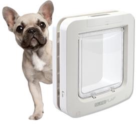sure flap pet door pet access solutions